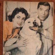 Coleccionismo de Revista Garbo: REVISTA GARBO AÑO 2 Nº 86 DE 6 DE NOVIEMBRE 1954 PORTADA ELIZABETH TAYLOR Y DANA ANDREWS. Lote 67386673