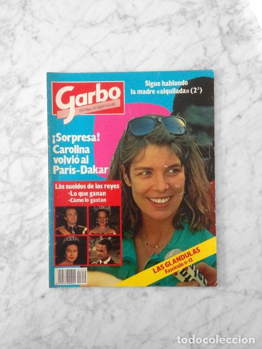 GARBO - 1985 CAROLINA, JULIO IGLESIAS, BRIGITTE BARDOT, ISABEL PANTOJA, BRITT EKLAND, KELLY LEBROCK (Coleccionismo - Revistas y Periódicos Modernos (a partir de 1.940) - Revista Garbo)