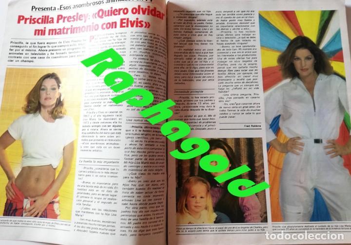 Coleccionismo de Revista Garbo: Revista GARBO nº 1531 Dallas J.R Priscilla Elvis Presley Phoebe Cates Julio Iglesias Farrah Fawcett - Foto 2 - 171125855