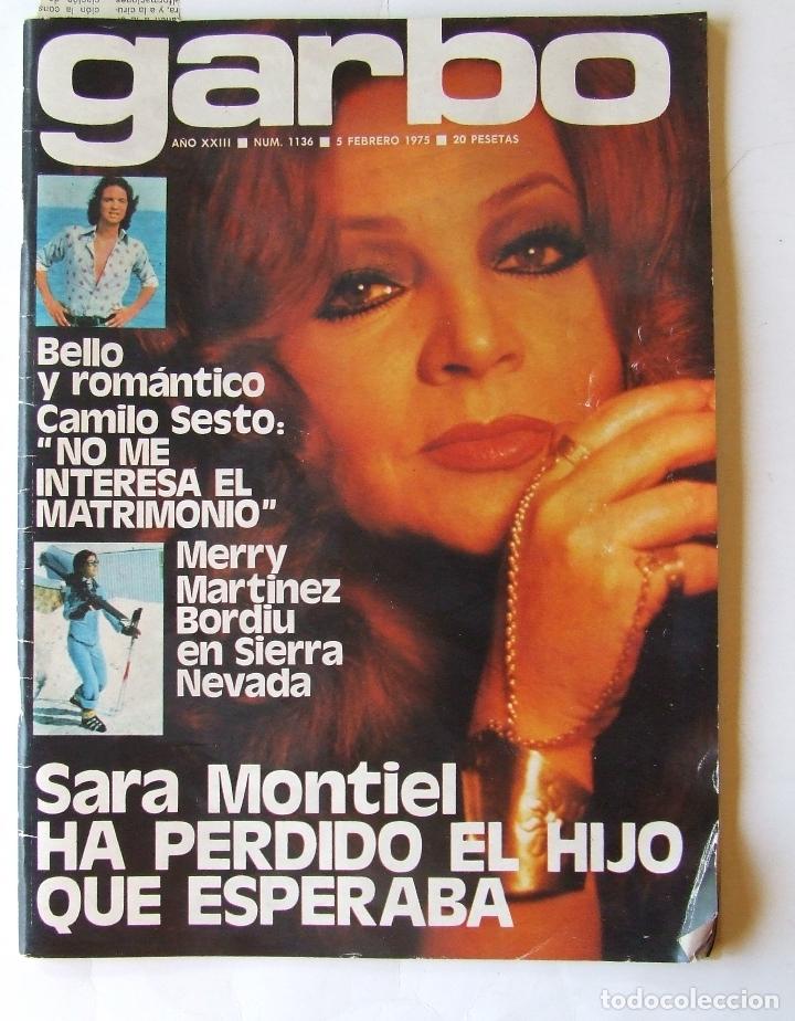 GARBO 1136 SARA MONTIEL CAMILO SESTO ALAIN DELON CONCHA VELASCO SILVIA TORTOSA ANTONIO FERRANDIS (Coleccionismo - Revistas y Periódicos Modernos (a partir de 1.940) - Revista Garbo)