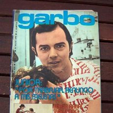 Coleccionismo de Revista Garbo: REVISTA GARBO / JUNIOR, MARI TRINI, TARYN POWER, JACKIE LANE, MARISOL, ROCIO DURCAL, LUCIANA PALUZZI. Lote 254956785