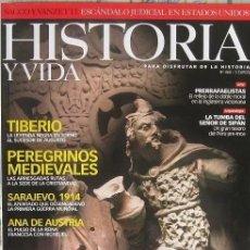 Collectionnisme de Magazine Historia y Vida: HISTORIA Y VIDA Nº 460 - CELTAS, TIBERIO, PEREGRINOS MEDIEVALES. Lote 259329970