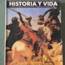 Coleccionismo de Revista Historia y Vida: HISTORIA Y VIDA REVISTA NUMERO 315: EL CABALLO FIEL ALIADO DEL HOMBRE. MUY BUEN ESTADO. VER FOTOS. Lote 268813834