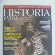 Coleccionismo de Revista Historia y Vida: HISTORIA Y VIDA , Nº 460: CELTAS, SACCO Y VANZETTI, TUMBA EÑOR SIPAN, SARAJEVO 1914, ETC. Lote 278412283