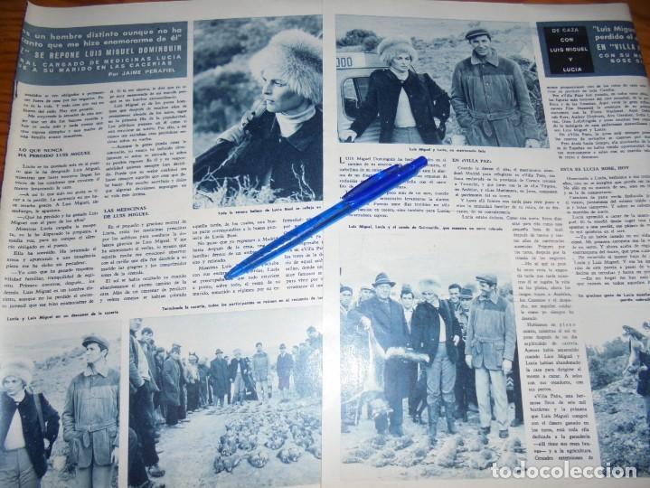 RECORTE : DE CAZA CON LUIS MIGUEL Y LUCIA BOSÉ . HOLA, MARZO 1965 () (Coleccionismo - Revistas y Periódicos Modernos (a partir de 1.940) - Revista Hola)