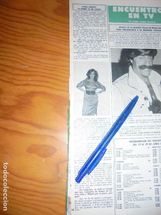 RECORTE : FEDRA LORENTE : LA BOMBI YA NO EXISTE. HOLA, JUNIO 1984 () (Coleccionismo - Revistas y Periódicos Modernos (a partir de 1.940) - Revista Hola)