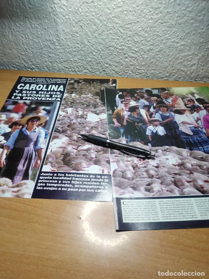 CAROLINA DE MONACO . HOLA 9/6/94 (Coleccionismo - Revistas y Periódicos Modernos (a partir de 1.940) - Revista Hola)