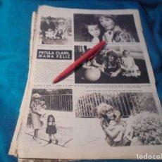 Coleccionismo de Revista Hola: RECORTE : PETULA CLARK, MADRE FELIZ . HOLA, JUNIO 1963 (#). Lote 243767515