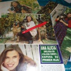 Coleccionismo de Revista Hola: RECORTE : ANA ALICIA, ( MELISSA EN FALCON CREST) ESPERA SU PRIMER HIJO. HOLA, MAYO 1992(#). Lote 293734138
