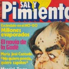 Coleccionismo de Revista Interviú: SAL Y PIMIENTA, SUPLEMENTO SATÍRICO DE INTERVIÚ Nº 27 #. Lote 268841014