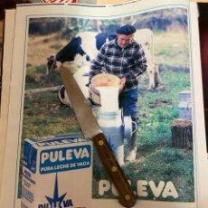 Coleccionismo de Revistas: RECORTE REVISTA LECTURAS Nº1667 AÑO 1984 / ANUNCIO PUBLICIDAD LECHE PULEVA. Lote 221695632