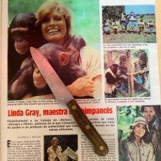 Coleccionismo de Revistas: RECORTE REVISTA LECTURAS Nº1667 AÑO 1984 / LINDA GRAY. Lote 221697458