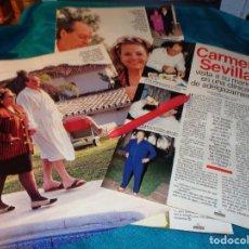Coleccionismo de Revistas: RECORTE : CARMEN SEVILLA, VISITA A SU MARIDO EN CLINICA. LECTURAS, FBRO 1993(#). Lote 277061958