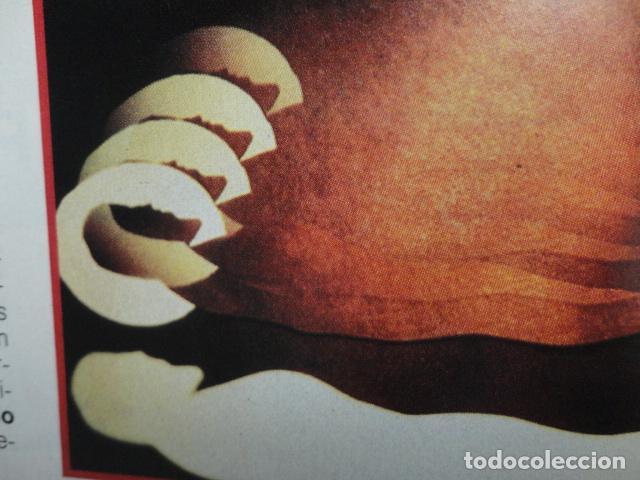 Coleccionismo de Revista Más Allá: REVISTA MAS ALLA Nº 21 AÑO 1990 ,LA GRAN PIRAMIDE DE KEOPS - LAS ARMAS NUCLEARES -VIVIR O MORIR - Foto 11 - 69892165