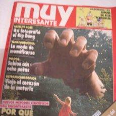 Coleccionismo de Revista Muy Interesante: MUY INTERESANTE Nº 133. Lote 8402277