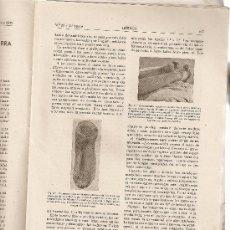 Coleccionismo de Revista Muy Interesante: REVISTA IBERICA 23.AÑO1945.ACCIDENTES DE GUERRA.PISOCOLOGIA.EL PROFESIOGRAMA DEL INGENIERO.. Lote 9078078