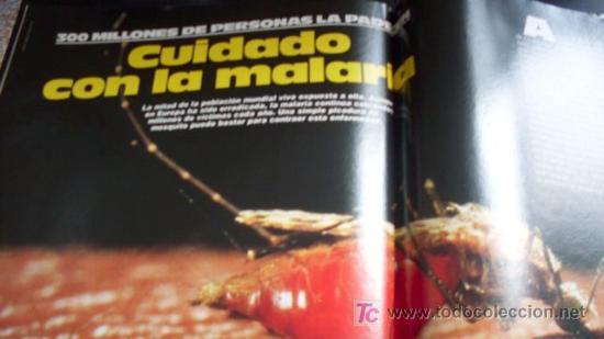 Coleccionismo de Revista Muy Interesante: MUY INTERESANTE - REVISTA - Nº 65 - Octubre 1986 - Foto 13 - 24669741