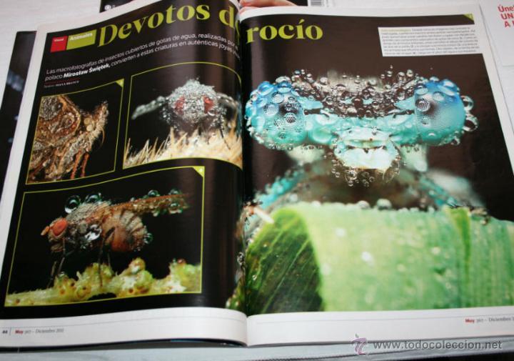 Coleccionismo de Revista Muy Interesante: REVISTA MUY INTERESANTE 367 CON ESPECIAL 16 PAG EL UNIVERSO DE LAS FRAGANCIAS - Foto 2 - 102976914
