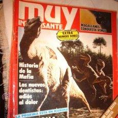 Coleccionismo de Revista Muy Interesante: REVISTA - MUY INTERESANTE EL ENIGMA DE LAS GRANDES EXTINCIONES, Nº 113 OCTUBRE DE 1990.. Lote 12612970