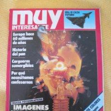 Coleccionismo de Revista Muy Interesante: MUY INTERESANTE 41 -OCTUBRE 1984. Lote 45851281