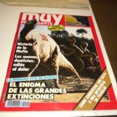 Collectionnisme de Magazine Muy Interesante: REVISTA MUY INTERESANTE Nº 113 OCTUBRE 1990. Lote 82951984