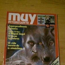Coleccionismo de Revista Muy Interesante: REVISTA MUY INTERESANTE Nº 69 FEBRERO 1987. Lote 95901923
