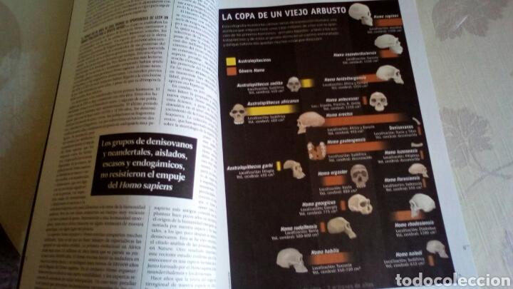 Coleccionismo de Revista Muy Interesante: Revista Muy Intresante Sobre el origen de la humanidad Atapuerca - Foto 4 - 220961985