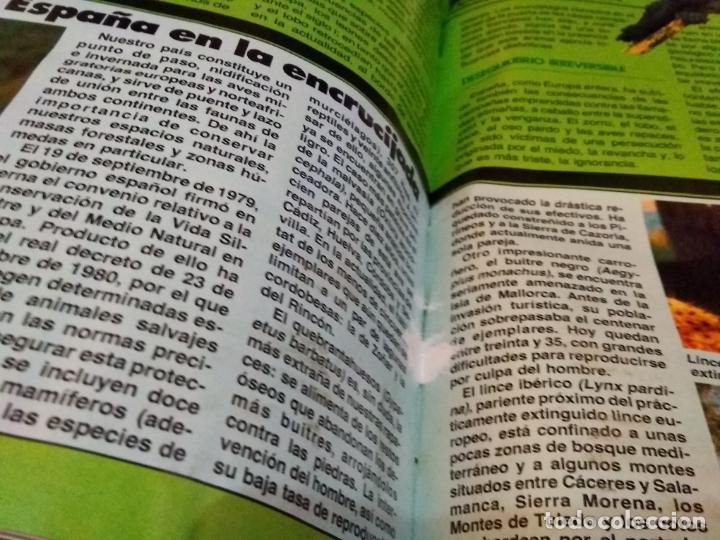 Coleccionismo de Revista Muy Interesante: LOTE 3 TOMOS CON 36 NÚMEROS (01 AL 36) REVISTA MUY INTERESANTE (AÑOS 80) - Foto 8 - 245465440