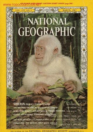NATIONAL GEOGRAPHIC MARZO 1967 COPITO DE NIEVE (Coleccionismo - Revistas y Periódicos Modernos (a partir de 1.940) - Revista National Geographic)