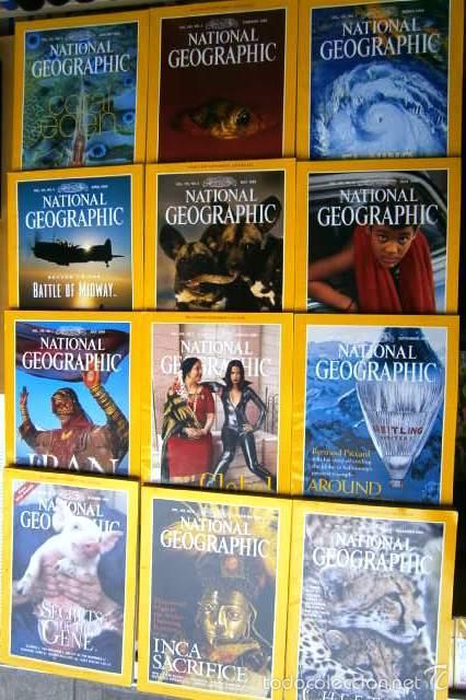 Coleccionismo de National Geographic: 12 Revistas National Geographic (Año 1999 completo) Edición original norteamericana en inglés - Foto 2 - 58820821