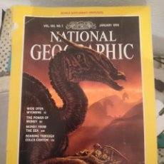 Coleccionismo de National Geographic: REVISTA NATIONAL GEOGRAPHIC - EN INGLES - VOL 183 N 1 - ENERO 1993 ---REFSAMUTEL. Lote 82140184