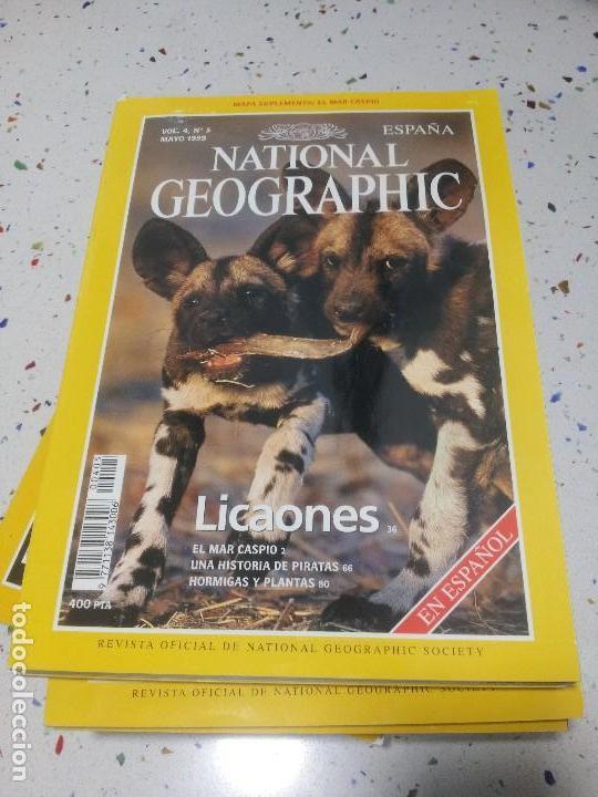 NATIONAL GEOGRAPHIC LICAONES MAYO1999 (Coleccionismo - Revistas y Periódicos Modernos (a partir de 1.940) - Revista National Geographic)