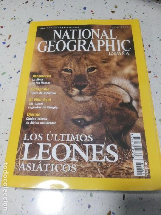 NATIONAL GEOGRAPHIC LEONES JUNIO 2001 (Coleccionismo - Revistas y Periódicos Modernos (a partir de 1.940) - Revista National Geographic)