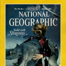 Colecionismo da National Geographic: NATIONAL GEOGRAPHIC. ED INGLESA.VOL 175. Nº 1 - ENERO 1989 - RAYAS,INDONESIA,COCAINA. Lote 111633203