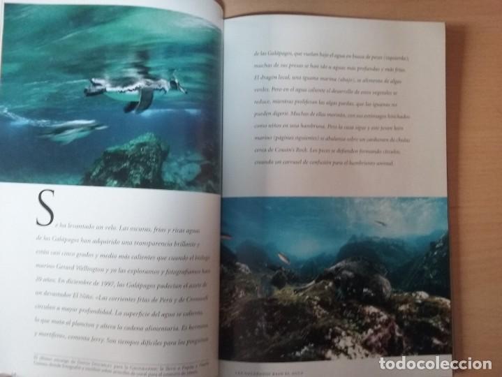 Coleccionismo de National Geographic: REGRESO A LA BATALLA DE MIDWAY. VOLUMEN 4, NÚMERO 4. ABRIL 1999. NATIONAL GEOGRAPHIC - Foto 4 - 155335362