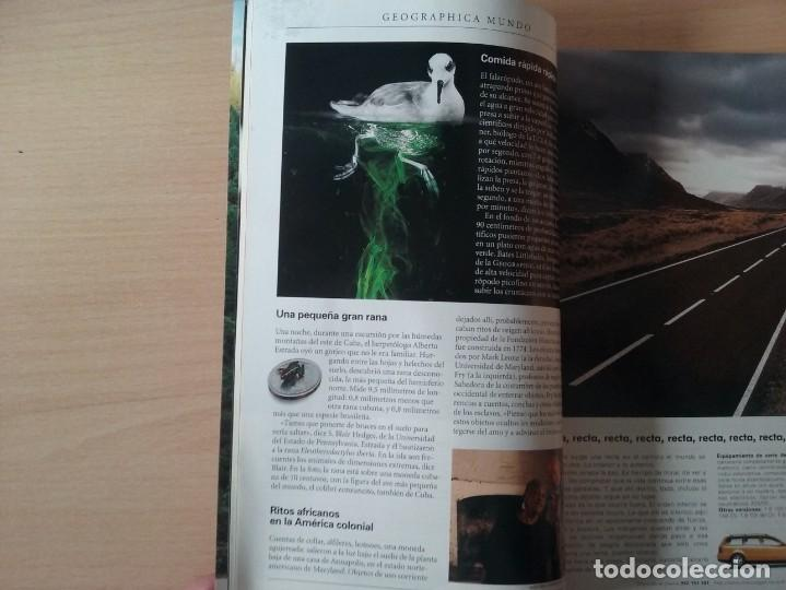Coleccionismo de National Geographic: LICAONES. VOLUMEN 4, NÚMERO 5. MAYO 1999. NATIONAL GEOGRAPHIC - Foto 3 - 155346842