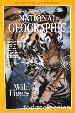 Coleccionismo de National Geographic: 12 Revistas National Geographic (Año 1997 completo) Edición original norteamericana en inglés - Foto 3 - 155601646