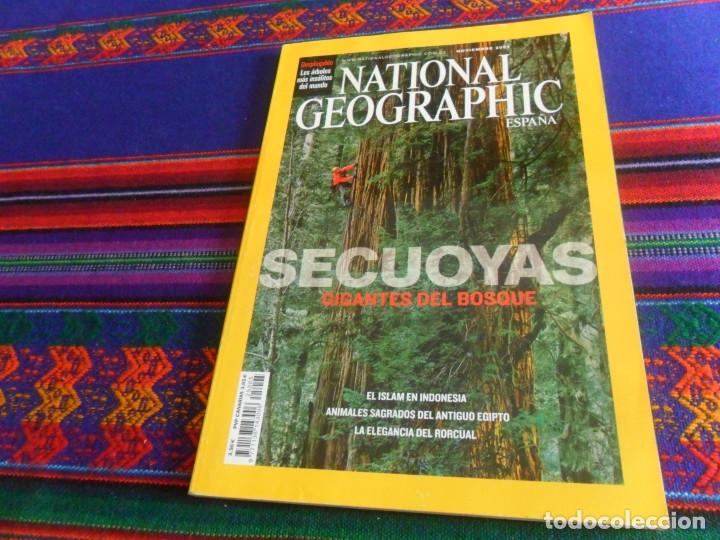 Coleccionismo de National Geographic: NATIONAL GEOGRAPHIC ESPAÑA PLANETAS TIERRA 6 SECUOYAS 5 LA CUEVA MÁS GRANDE MUNDO 2 NEANDERTALES 5 - Foto 3 - 143960078