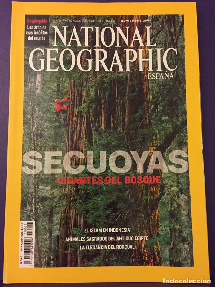Coleccionismo de National Geographic: REVISTAS NATIONAL GEOGRAPHIC - Foto 9 - 160504422