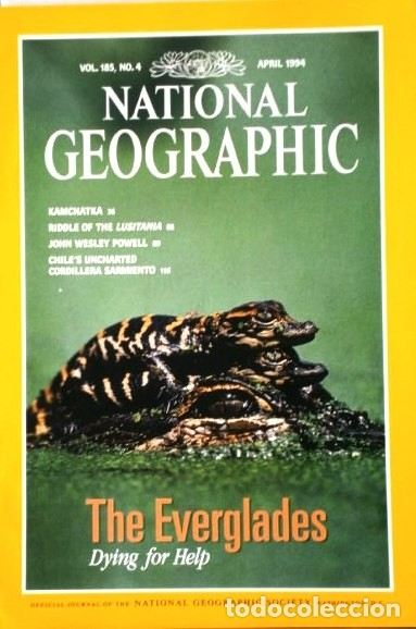 Coleccionismo de National Geographic: 12 Revistas National Geographic (Año 1994 completo) Edición original norteamericana en inglés - Foto 2 - 167736852
