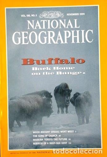 Coleccionismo de National Geographic: 12 Revistas National Geographic (Año 1994 completo) Edición original norteamericana en inglés - Foto 4 - 167736852