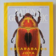 Coleccionismo de National Geographic: NATIONAL GEOGRAPHIC / ESCARABAJOS JOYA. Lote 179059015