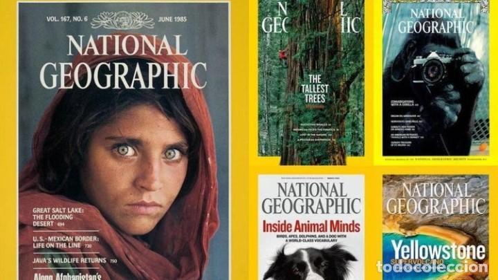 AMPLIA COLECCION DE REVISTAS DE NATIONAL GEOGRAPHIC. (Coleccionismo - Revistas y Periódicos Modernos (a partir de 1.940) - Revista National Geographic)