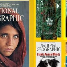 Coleccionismo de National Geographic: AMPLIA COLECCION DE REVISTAS DE NATIONAL GEOGRAPHIC.. Lote 195368648