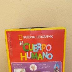 Coleccionismo de National Geographic: GRAN LOTE DE 16 FASCÍCULOS EL CUERPO HUMANO NATIONAL GEOGRAPHIC, RBA EDICIÓN 2015.. Lote 207997062