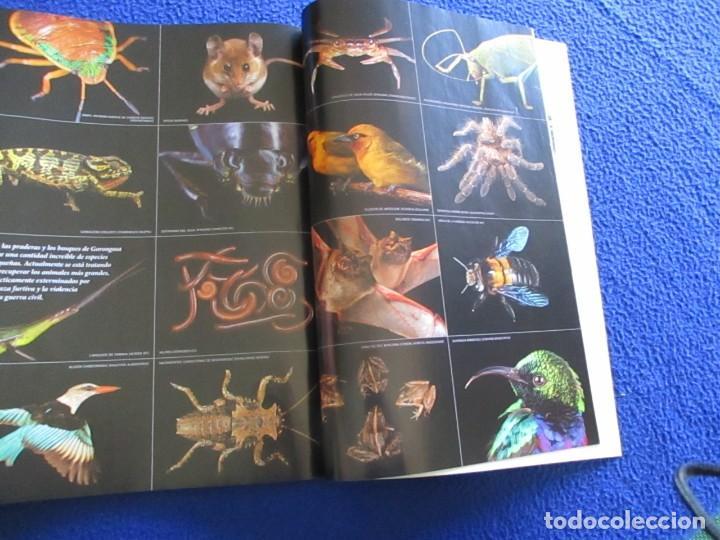 Coleccionismo de National Geographic: Revista National Geographic Agosto 2013 MAYAS Revelando los secretos de los Cenotes Sagrados - Foto 6 - 210166555