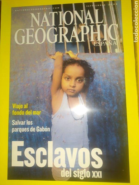 Coleccionismo de National Geographic: Gran Oportunidad, Liquidación de Gran lote de 11 National Geographic - Foto 2 - 220938771