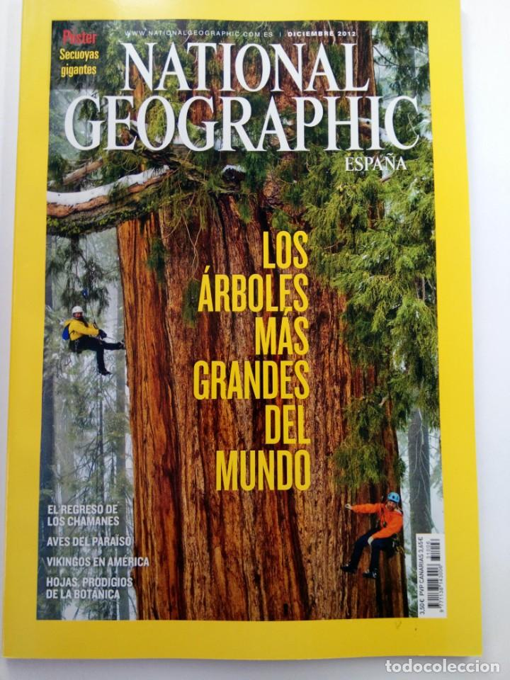 NATIONAL GEOGRAPHIC ESPAÑA - DICIEMBRE 2012 - LOS ÁRBOLES MÁS GRANDES DEL MUNDO (Coleccionismo - Revistas y Periódicos Modernos (a partir de 1.940) - Revista National Geographic)