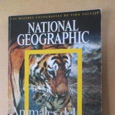 Coleccionismo de National Geographic: NATIONAL GEOGRAPHIC ANIMALES DEL MUNDO LAS MEJORES FOTOGRAFÍAS DE VIDA SALVAJE 2006 36 X 26 CMS. Lote 277505813