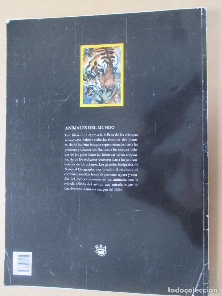 Coleccionismo de National Geographic: NATIONAL GEOGRAPHIC ANIMALES DEL MUNDO LAS MEJORES FOTOGRAFÍAS DE VIDA SALVAJE 2006 36 X 26 CMS - Foto 2 - 277505813